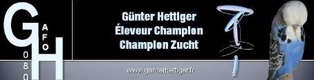 Gunter HETTIGER ( Éleveur )
