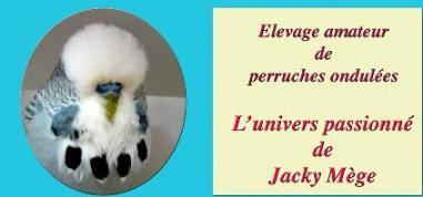 Jacky MEGE  ( Éleveur )